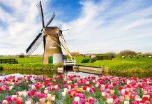 Du lịch Hà Lan mùa nào đẹp nhất